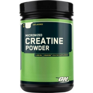 Optimum Nutrition Micronized Creatine Powder 317g